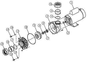 Waterway Spa Pump Wiring Diagram Collection