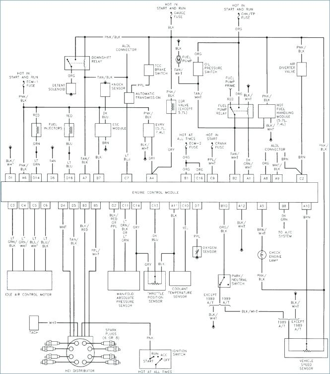 [GR_0398] Rv Wiring Diagram Monaco Monaco Dynasty Rv