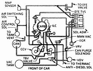 Basic Automotive Electrical Wiring Diagram