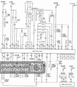 [ZD_0782] Honda Nu50 Wiring Diagram Download Diagram