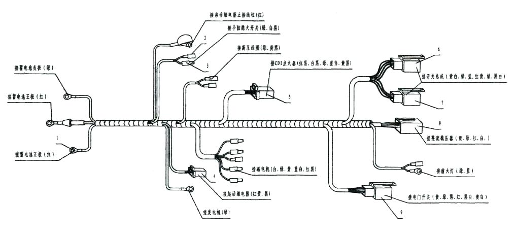 Wiring Diagram For Taotao 50Cc Scooter / Diagram Wiring