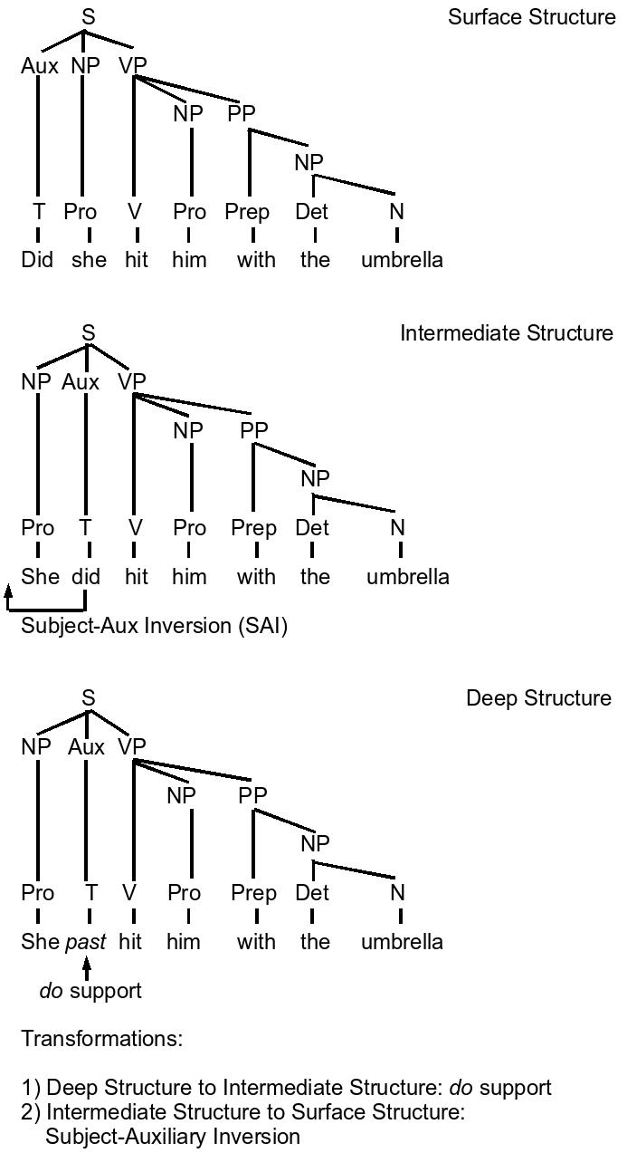 hight resolution of MC_5567 Diagram For Sentences Free Diagram