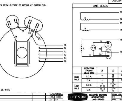 Wiring Diagram Info: 26 Gould Century Motor Wiring Diagram