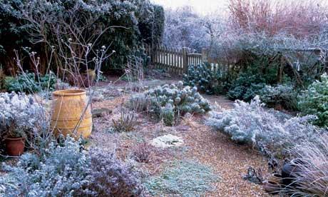 Garden Design Garden Design With The Winter Gardens At Cambridge