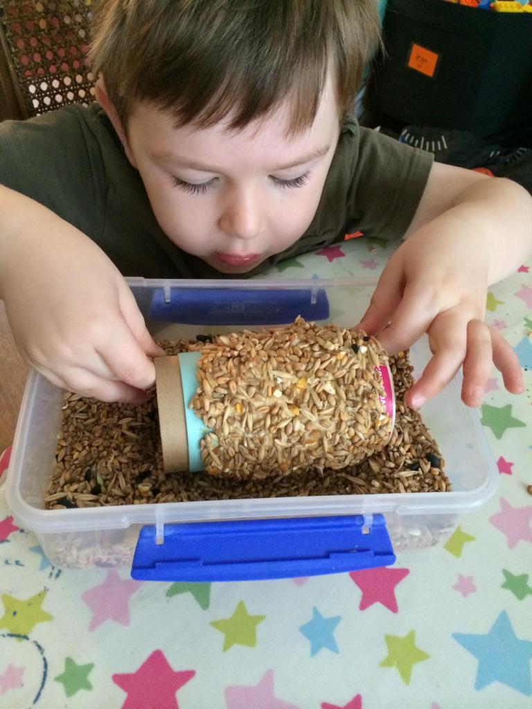 groove bulb bird feeder (4)