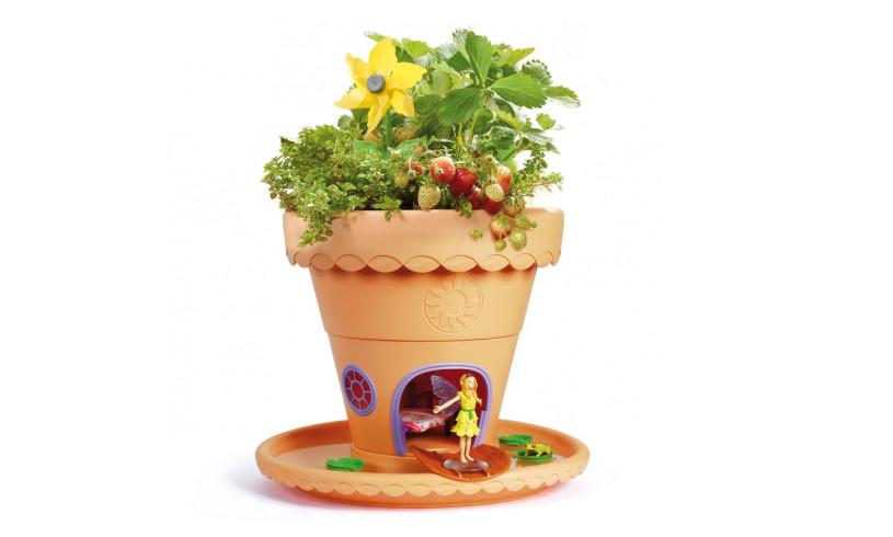 Lilypad Garden