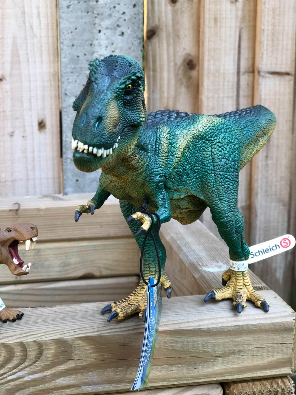 Roarsome play with the Schleich Dinosaur range
