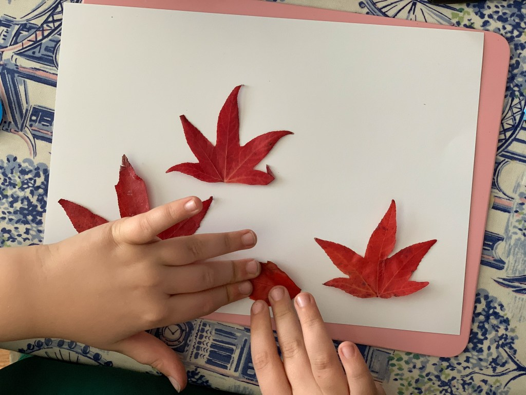 Make your own leaf monsters