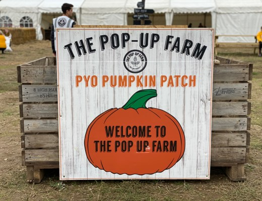 The Pop Up Farm PYO pumpkin patch