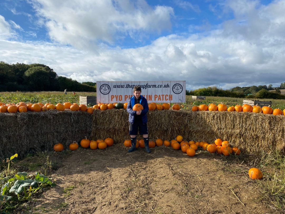 The Pop Up Farm pumpkin patch