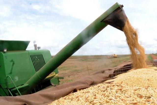 harvest soy