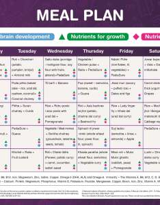 East plan also nutritious meal plans rh pediasure