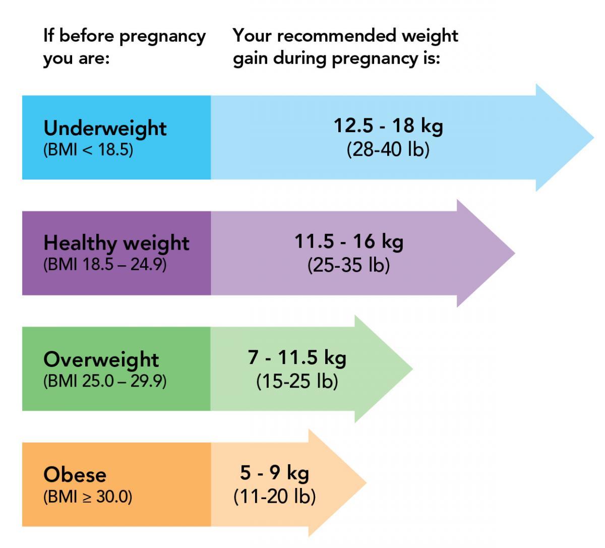 weight gain graph