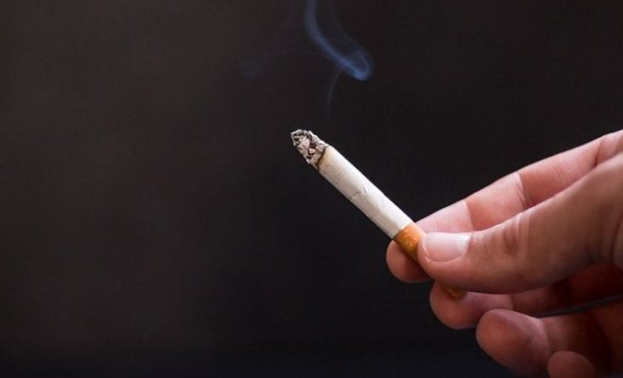 Kidney Health: Cigarette smoking can damage kidney, know how to keep it healthy