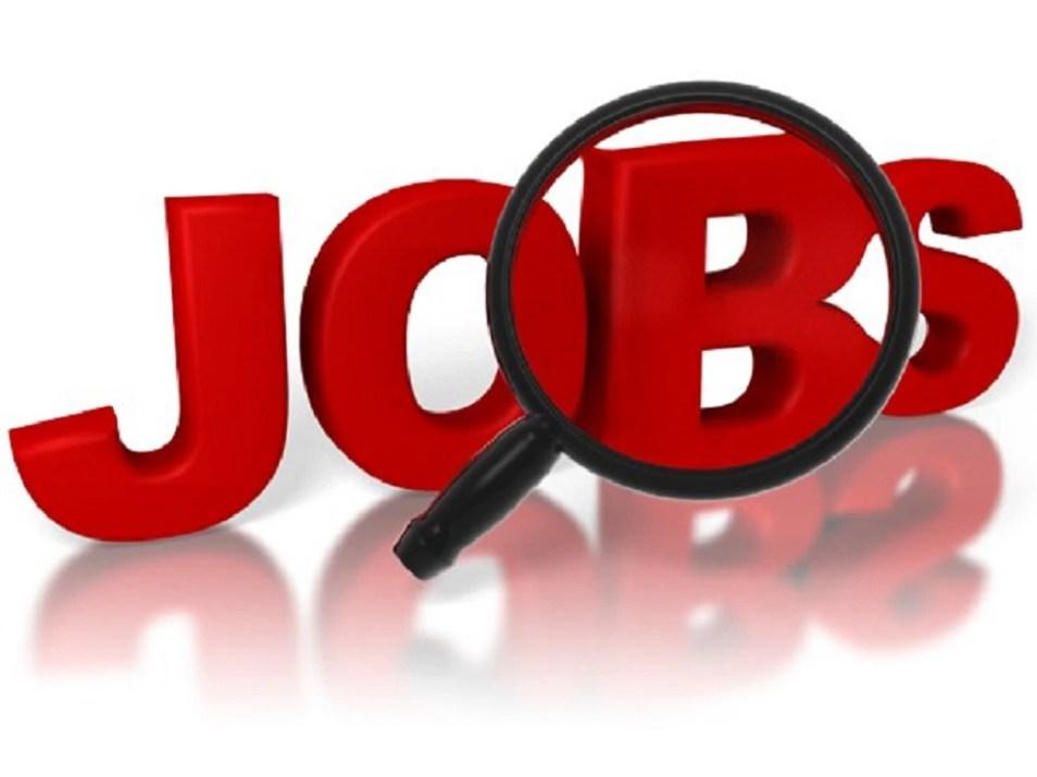 PSCB Recruitment 2021: पंजाब स्टेट कोऑपरेटिव बैंक में 856 पदों पर निकली भर्तियां, ऐसे करें आवेदन