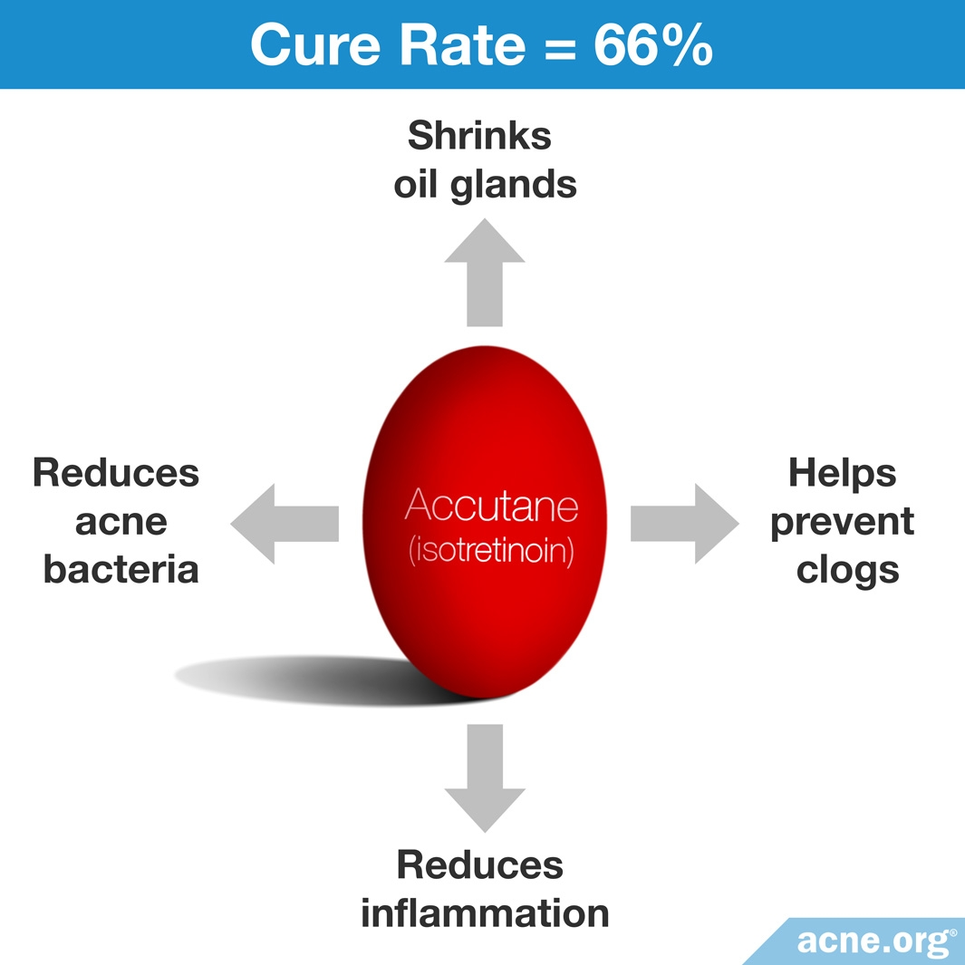 hight resolution of how accutane isotretinoin works