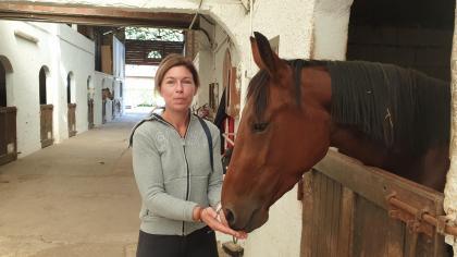 Val d'Oise.  The equestrian middle Ecuries de Frépillon opens its stalls