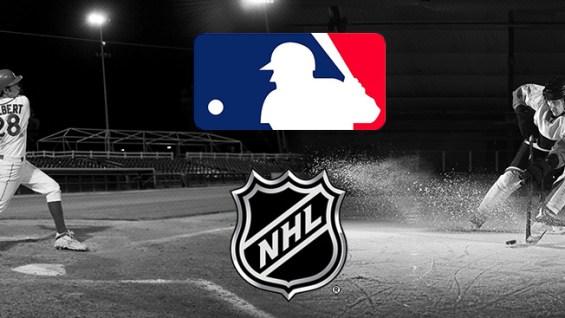 Image result for hockey and baseball