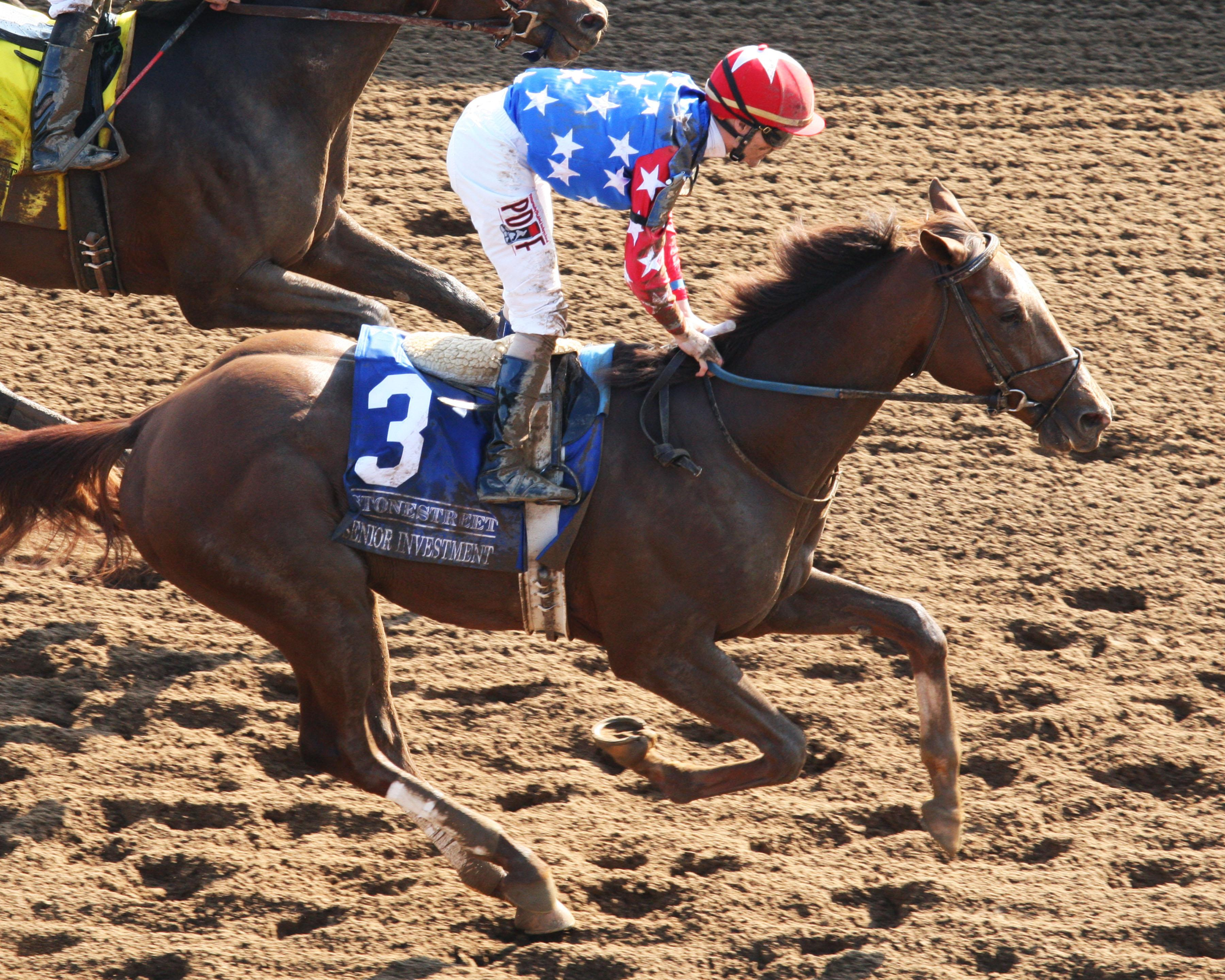 Belmont Stakes Cheat Sheet America S Best Racing