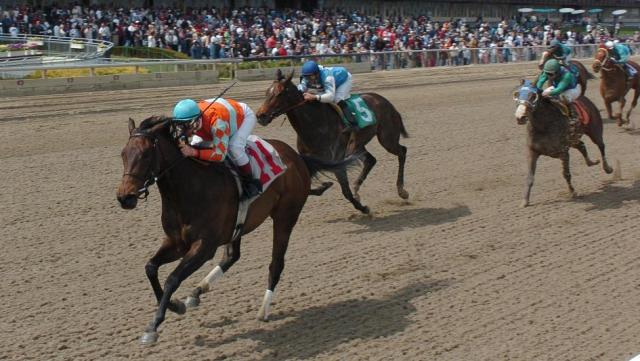 Best Bets: Loaded Aqueduct Saturday Card a Great ...