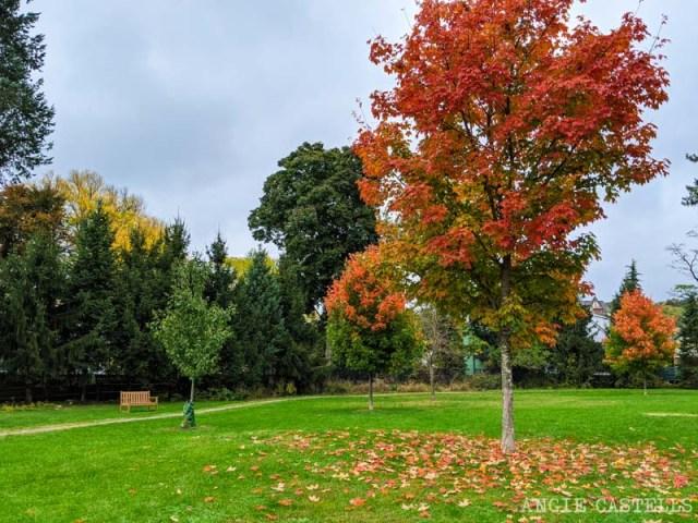 Que ver en Tarrytown y Sleepy Hollow - Neperan Park