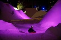Colorado Luge La Plagne - Ski Resort France