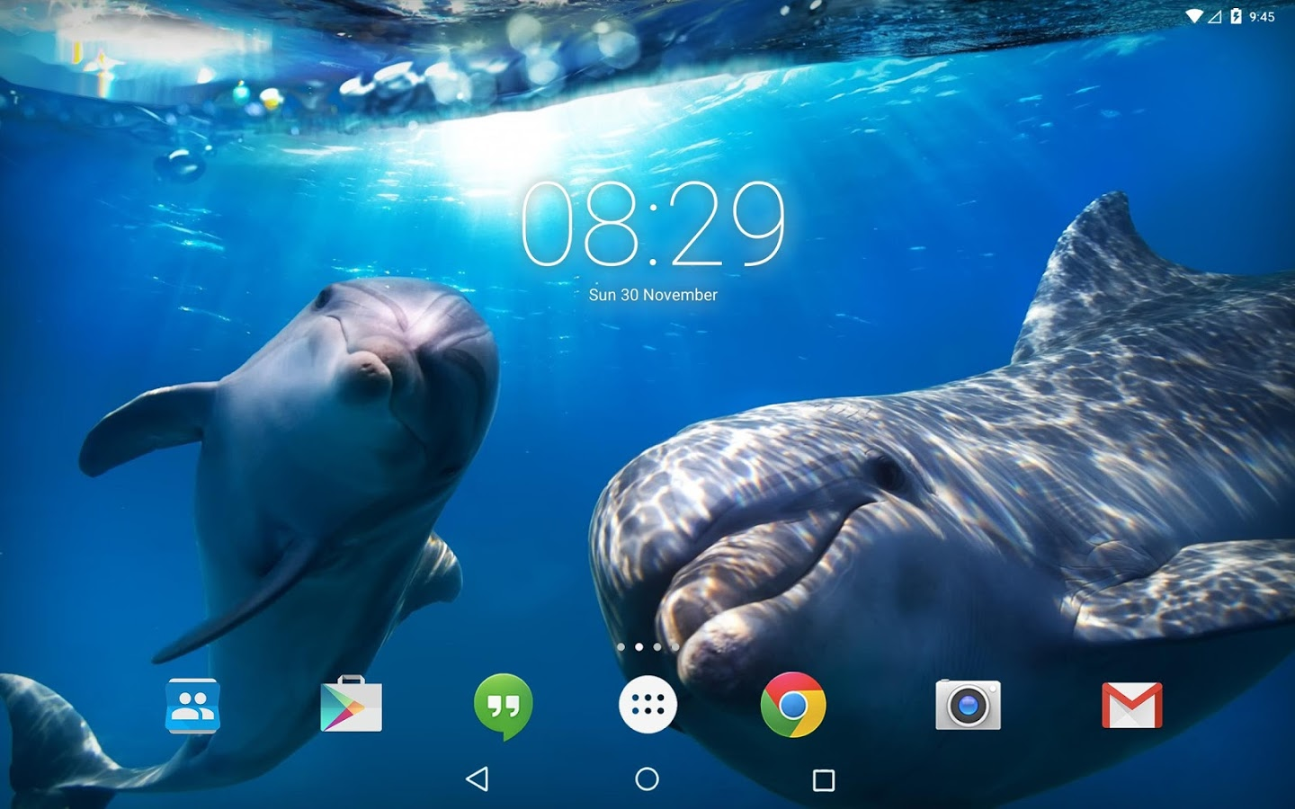 Dolphin 3d Live Wallpaper Icon Ocean Dolphins Live Wallpaper 187 Apk Thing Android Apps