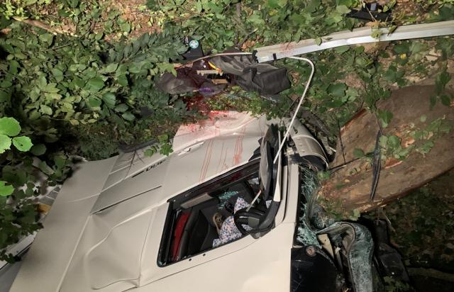 На Закарпатье случилось жуткое смертельное ДТП с фурой: фото и видео, АБЗАЦ