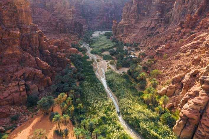 أرض النخيل والعيون الساحرة..اكتشف وادي الديسة بالسعودية - Alghad