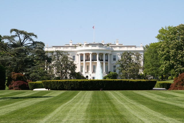 White House: don't blame us for software patents