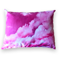 Custom printed Throw Pillow cases | Products | Art of Where