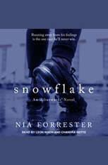 Snowflake - Audiobook Download