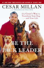 Be the Pack Leader: Use Cesars Way to Transform Your Dog . . . and Your Life - Audiobook Download