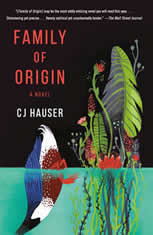 Family of Origin: A Novel - Audiobook Download