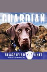 Guardian - Audiobook Download