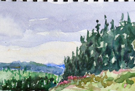 The foothills of the Rockies are Lodgepole pines and aspens. It was my turn to sit in the back seat, so I painted them.