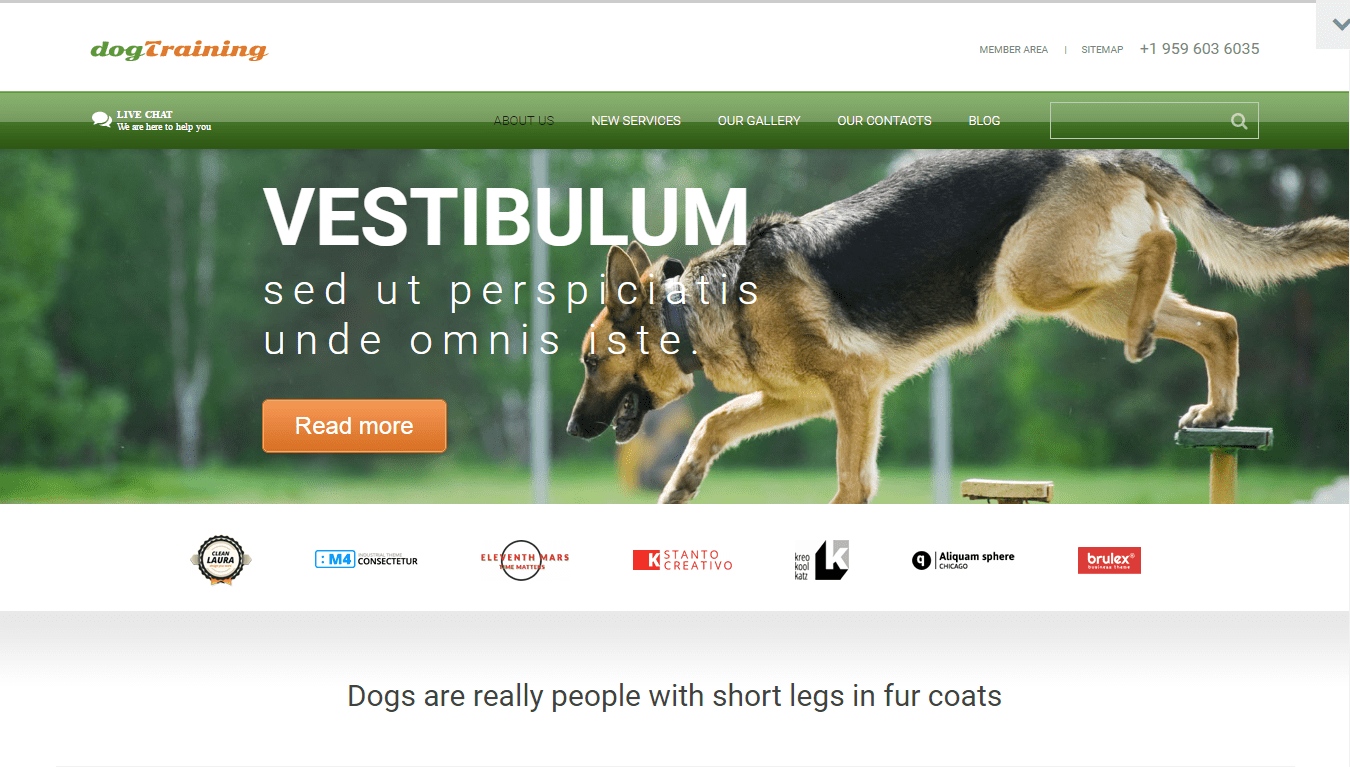 Some More Awesome Dog Website Templates 2017