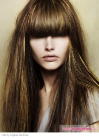 Pictures : Brown Hair Color Shades