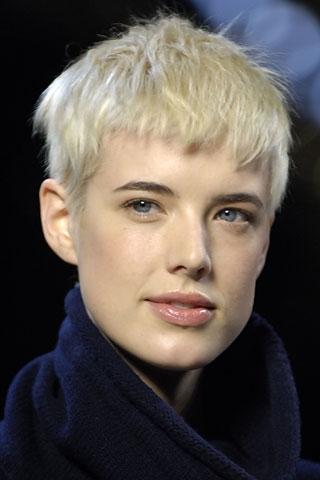 Agyness Deyn Hair Style Icon