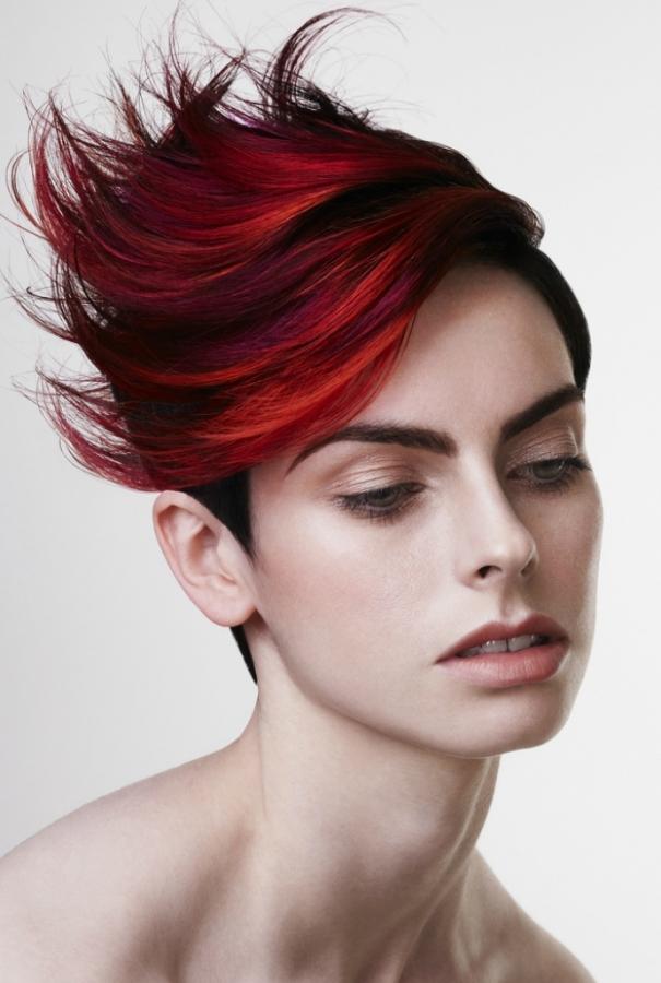 Punk Chic Hair Color Ideas 2012