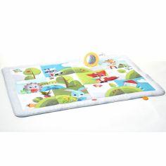 tapis d eveil et arche de jeux pour
