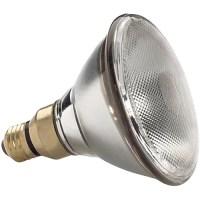 General Electric Quartzline PAR 38 Narrow Spot Lamp 23719 B&H