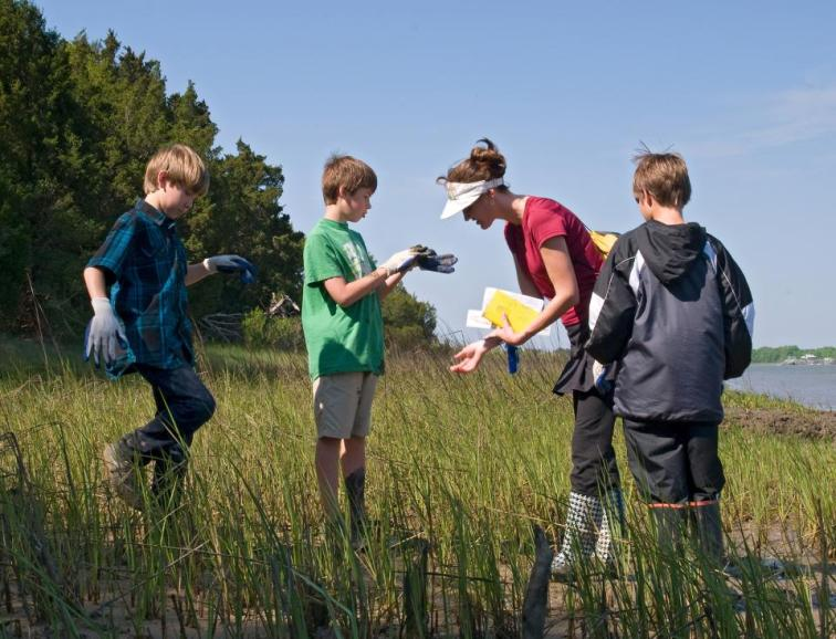 Elementary school students experiencing nature in the field