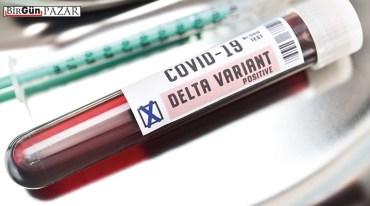 Aşılar, varyantlar ve Türkiye