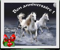 photos de cheval gratuites avec texte