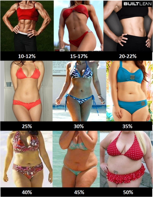 body-fat-percentage-women.jpg