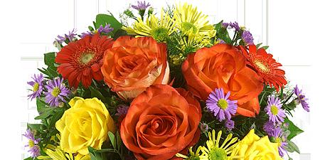 Blumen Blumenversand  Blumen verschicken  Blumenservice Blumenversand Blumengru