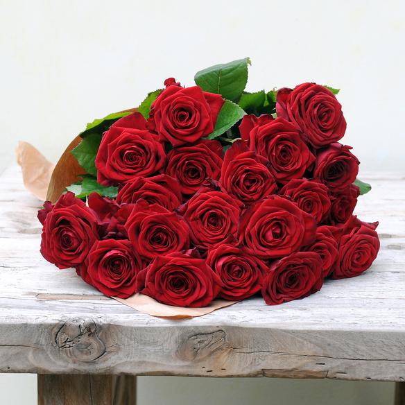 40 rote Rosen