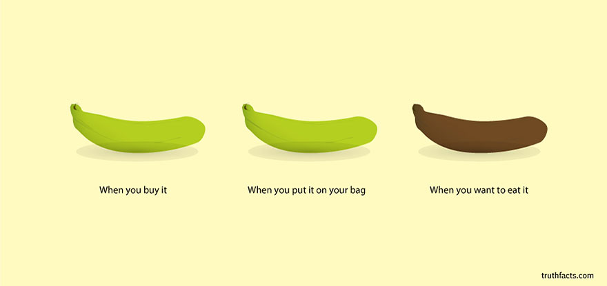 truth-facts-funny-graphs-wumo-7