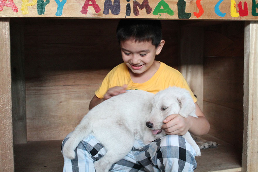 happy-animals-club-pet-shelter-kid-2